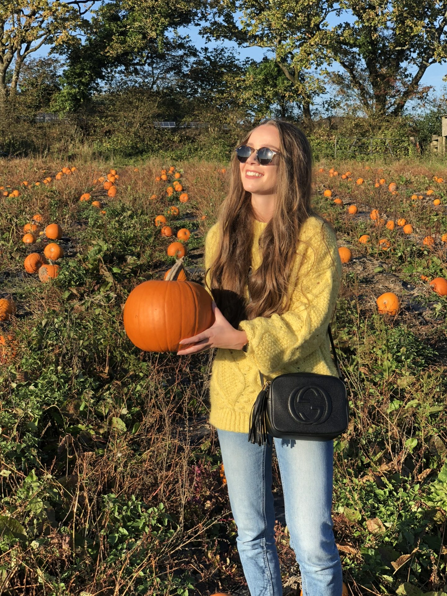 lifton farm pumpkin fest